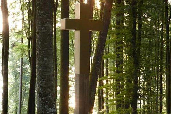 Waldruh - Kreuz im Wald