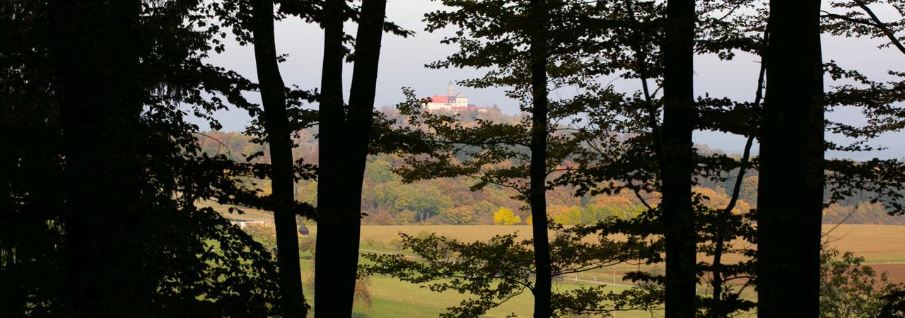 Waldruh Ostalb - Blick auf Schloss Baldern