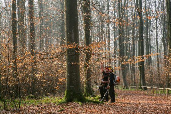 Pflege in der Waldruh Ostalb
